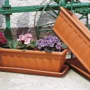 Pots & Window Boxes - Decorative